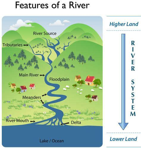 Two Ways Of Seeing A River Essay by River Parts Diagram Search Kieran Homework Rivers And Search