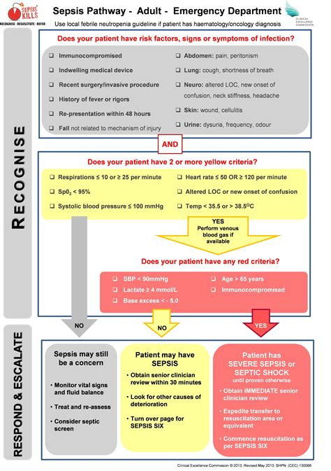 sepsis flowchart sepsis pictures to pin on pinsdaddy