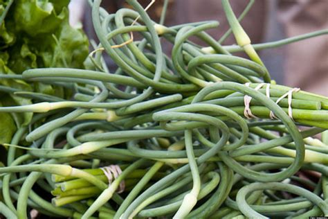 recipes that make the most of garlic scapes huffpost