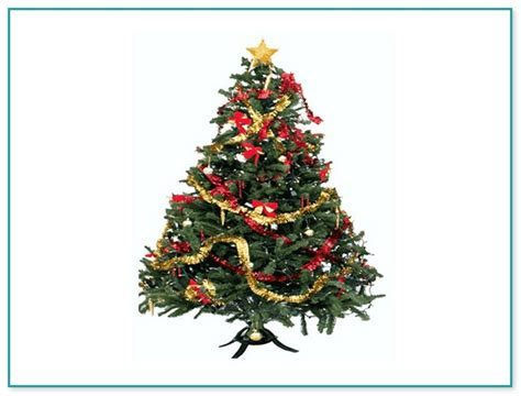 christmas tree repair service christmas decore