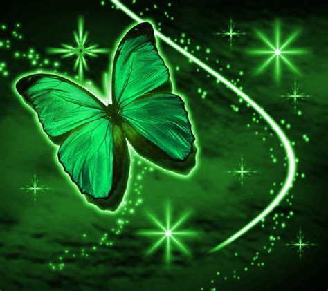wallpaper green butterfly green butterfly with stars background 1800x1600 background