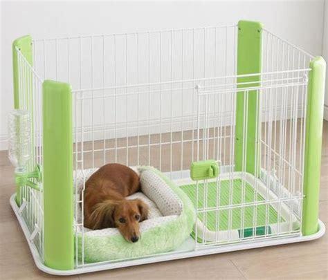 puppy pad holder diy starter kit for your new puppy home design garden architecture magazine