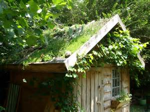 greenroofs projects ancaya green roof garden shed