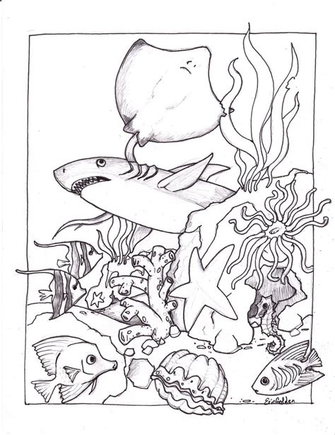 sea coloring pages fish and coloring pages
