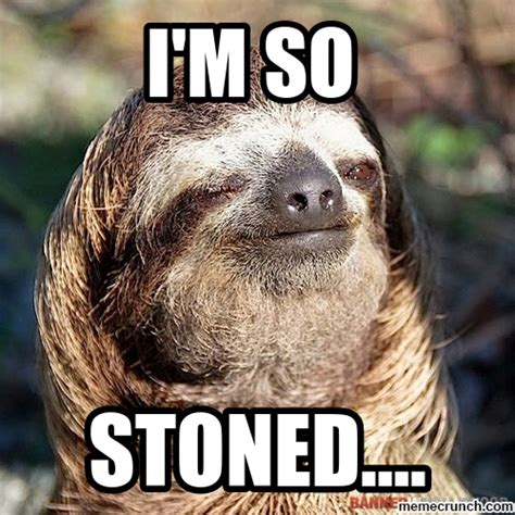 Sloth Meme Pictures - sloth meme