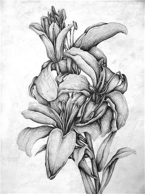 dibujo a lpiz de un dragn convertimageme dibujos a l 225 piz artisticos