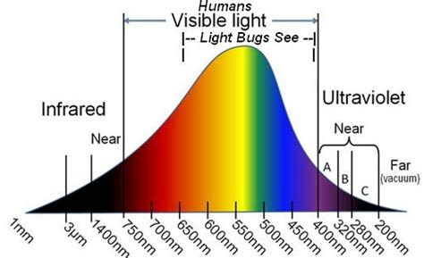 are mosquitoes attracted to uv light are mosquitoes attracted to uv light 28 images 110v