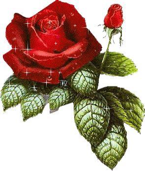imagenes de flores que se mueven imagenes de flores que brillan y se mueven imagenes
