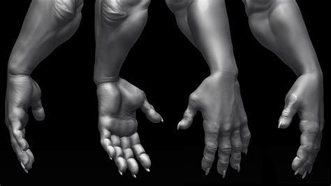 zbrush arm tutorial 1000 images about anatomy arms hands on pinterest