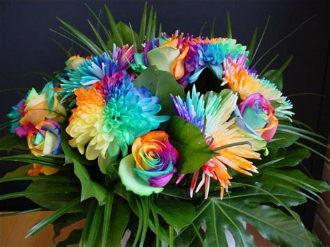 Natural Rainbow Roses All Colors In One Rose Pictures Of Colorful Flowers