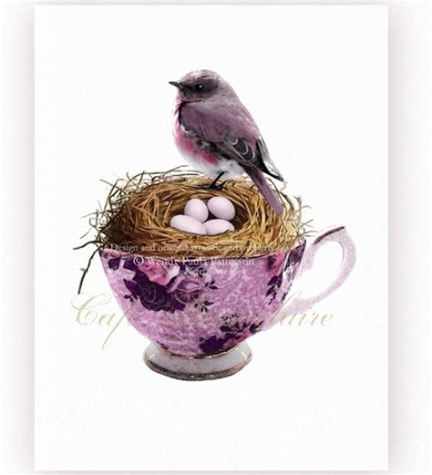 bird nest amp eggs in a teacup not just for tea