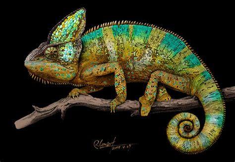 intricate ink animals in artist creates incredibly intricate and colorful drawings of animals designtaxi com