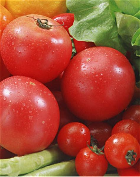 z y fruit company russia vegetables products z y fruit company