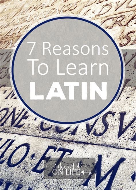 7 Reasons To Learn To Cook by 7 Reasons Why I M Learning And Teaching My