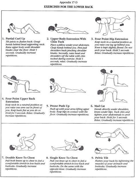 back strengthening exercises lower back strengthening