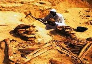 Image result for supreme court ruling smithsonian giant human remains