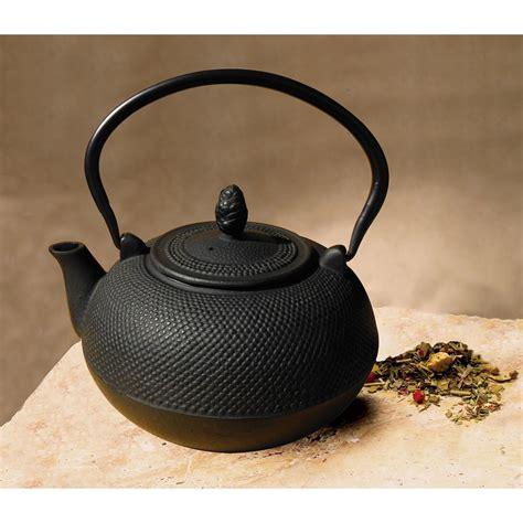 cast iron  liter hakone teapot wood stove humidifier