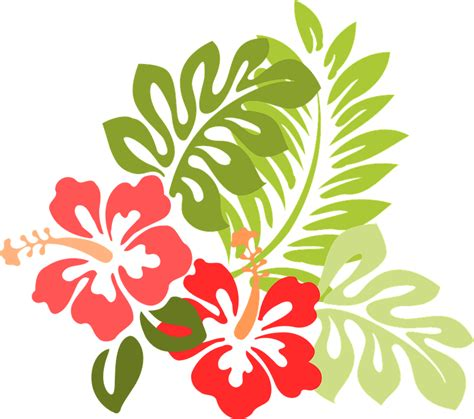 hibiscus pattern png free vector graphic hibiscus flower leaf foliage