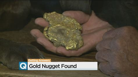 man finds treasure in backyard sierra prospector finds giant gold nugget that could fetch