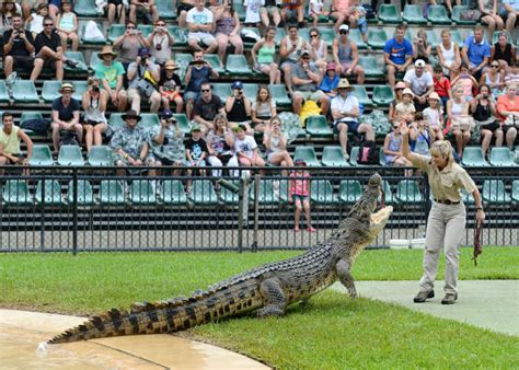 Australiazoo Com Au Giveaway - family travel holidays with kids fun things to see and do australia zoo