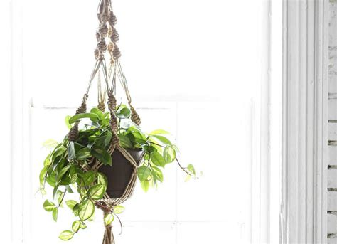 Buy Hanging Planters by Planter Ideas 7 Hanging Options To Buy Or Diy Bob Vila