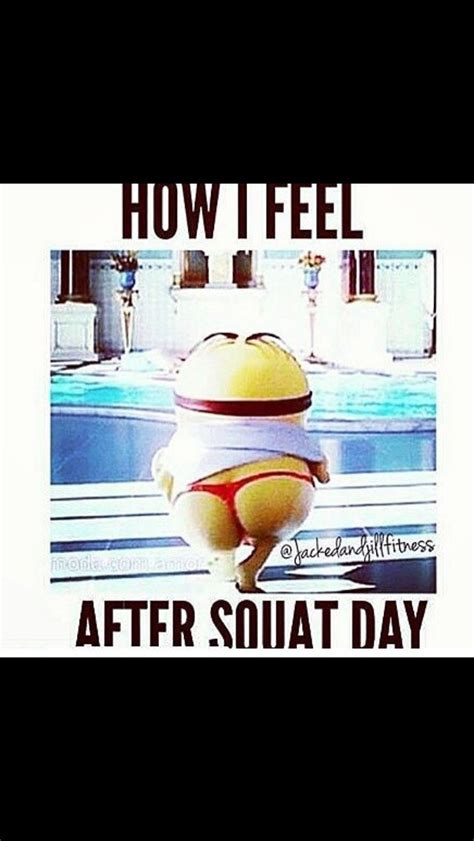 funny workout quotes squatsminion gym humor quotes daily leading quotes magazine