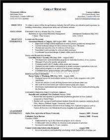 exles resume objective statements exles