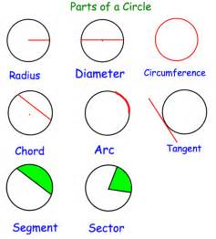 sections of a circle parts of the circle corbettmaths
