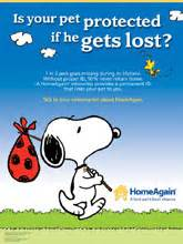 home again microchip support microchipping for pets homeagain pet microchip
