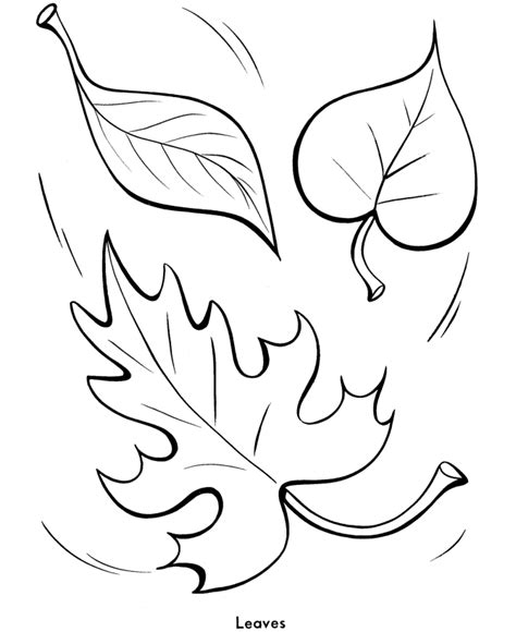 thanksgiving leaf coloring pages easy shapes coloring pages fall leaves printables