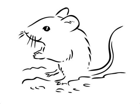 Mouse Template by 21 Mouse Templates Crafts Colouring Pages Free