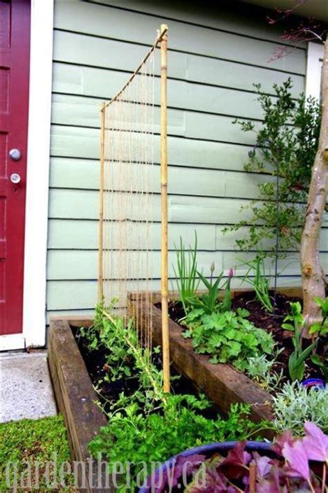 Cheap Garden Trellis Ideas 1000 Ideas About Pea Trellis On Bean Trellis Raised Beds And Gardening