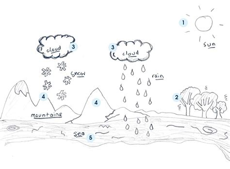 drawing diagrams water cycle diagram diagram site