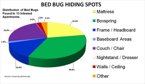 bed bug hiding places research bed bug control and extermination financing