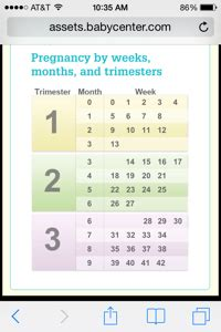 how many months is a how many months is 14 weeks march 2015 babies forums what to expect