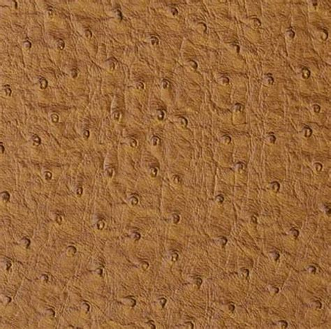 ostrich upholstery emu ostrich upholstery faux leather wheat 20 yards
