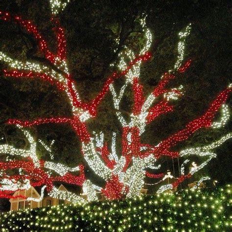 river oaks lights 17 best images about lights on