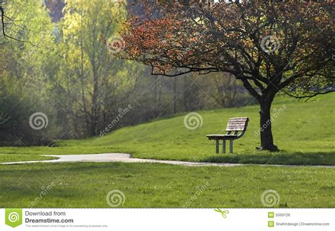 park bench scene park scene royalty free stock image image 5000126