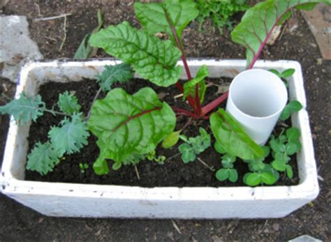 Wicking Planter Box by Make Your Own Wicking Planter Box