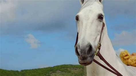 directv tv spot hannah davis and her horse bath directv tv spot hannah davis and her horse bath