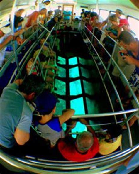 glass bottom boat biscayne national park clearwater florida hotels jules undersea lodge key