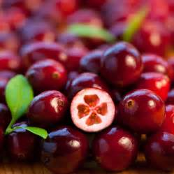 cranberry compounds as future therapy to control blood