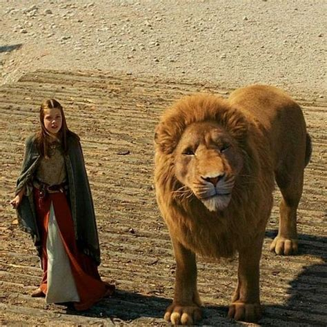 aslan the from narnia 123 best aslan the great images on