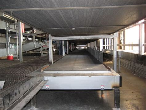 conveyor system expert witness alpine engineering  design
