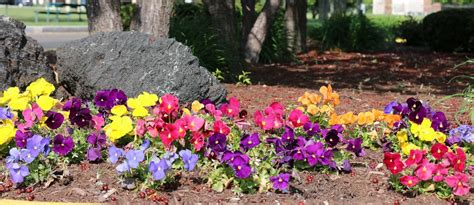 landscaping services green acres landscaping inc indianapolis commercial landscaping landscape lighting