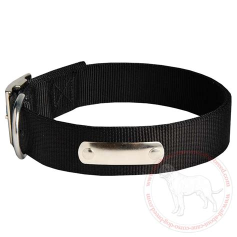 collars with name collar name tag harnessleather harnesses breeds picture