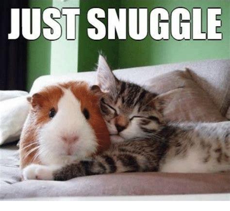 Snuggle Meme - snuggle meme 100 images amazing snuggle meme snuggle