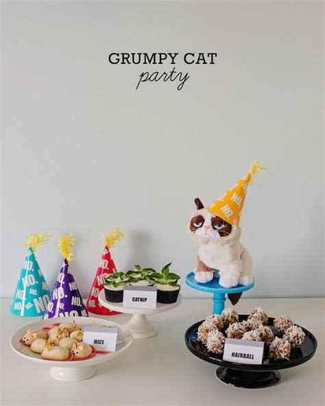 cat themed decorations best 25 grumpy cat birthday ideas on grumpy