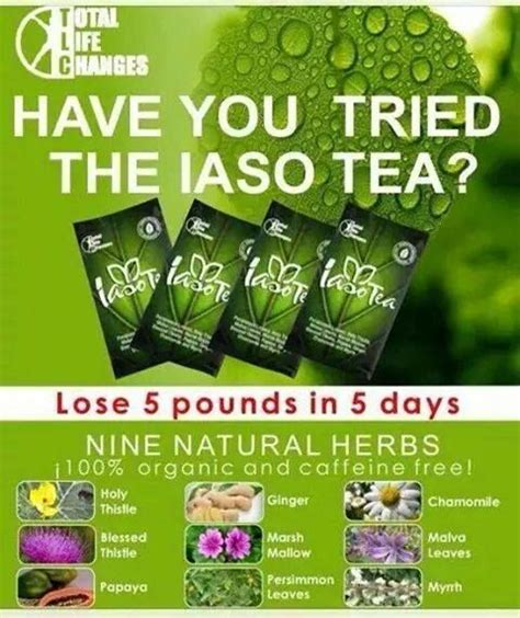 Lose 5lbs In A Week Detox by 38 Best Images About Iaso Tea Weight 5 Pounds In 5