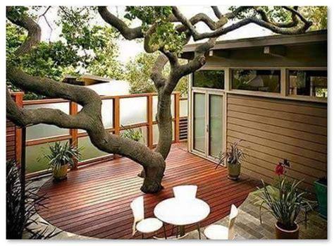 desain interior rumah pohon desain rumah pohon desain rumah unik